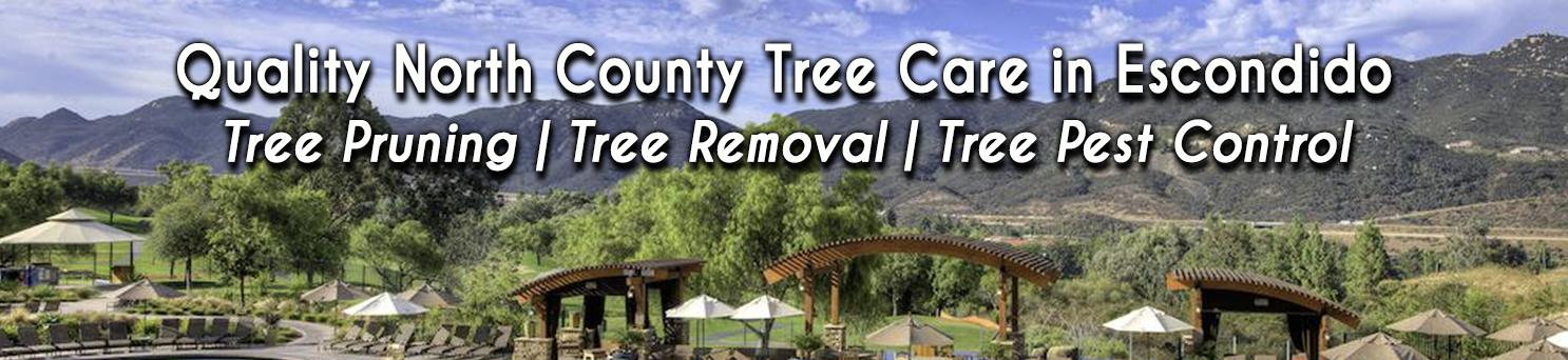 Tree Care in Escondido | Banner | Tree Barber
