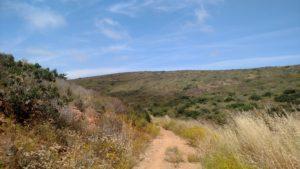 rancho la costa